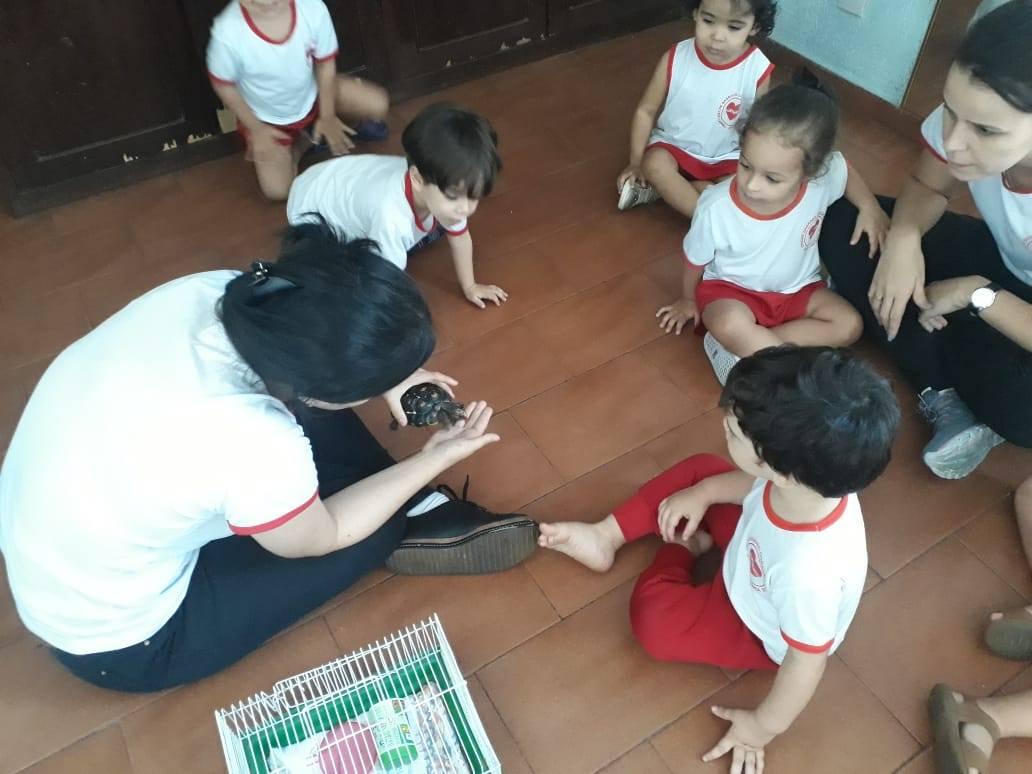 Creche Sagrado Coração de Jesus